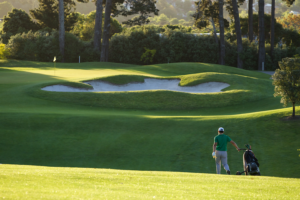 <strong>REMUERA GOLF CLUB<span><b>view larger</b></span></strong><i>→</i>