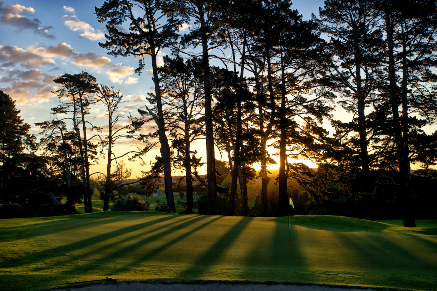 <strong>REMUERA GOLF CLUB<span><b>view larger</b></span></strong><i>&rarr;</i>