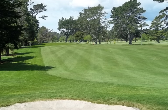 <strong>HUAPAI GOLF CLUB<span><b>in</b>REMODEL </span></strong><i>&rarr;</i>