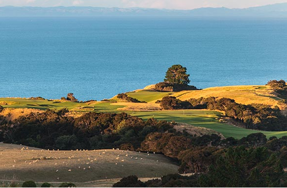 <strong>CAPE KIDNAPPERS<span><b>in</b>IRRIGATION </span></strong><i>→</i>