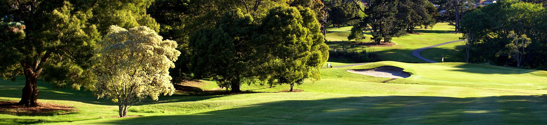 <strong>MAUNGAKIEKIE GOLF CLUB<span><b>view larger</b></span></strong><i>→</i>